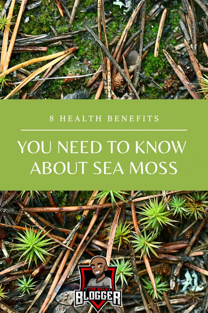 8 Incredible Sea Moss Benefits